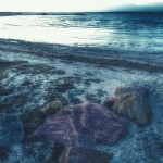 A pink stone is dreaming on the beach
