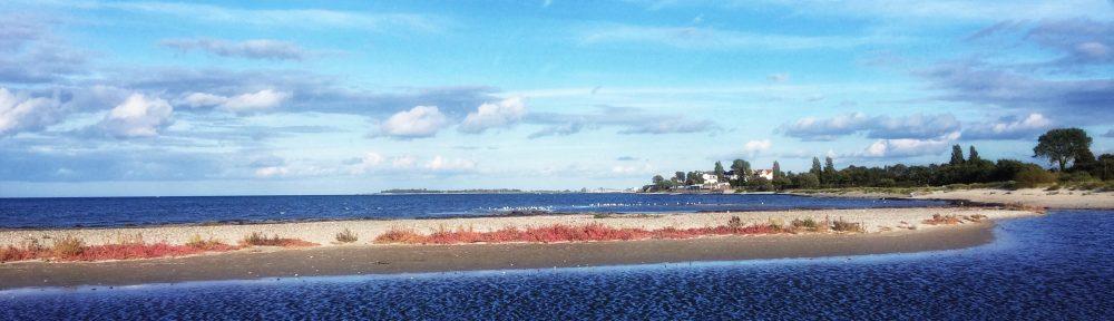 Autumn colours of the Baltic Sea