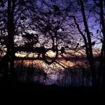 last light on the lake