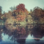 The surface of the autumn reflections