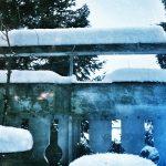 Snow on Lines